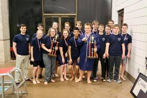 AHS Swimming and Diving Teams at State This Weekend