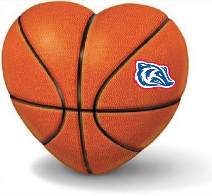 Badger on Heart-shaped Basketball