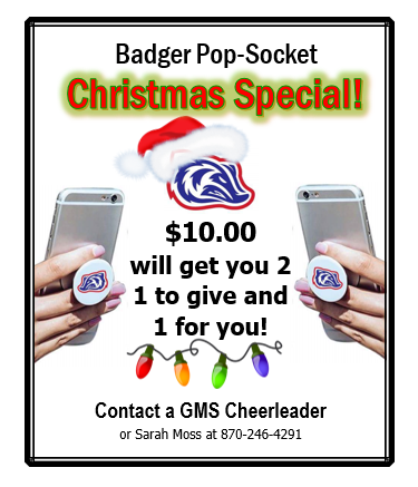 Badger Pop-Socket flyer